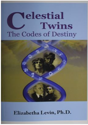 Celestial Twins the codes of destiny by Elizabetha Levin