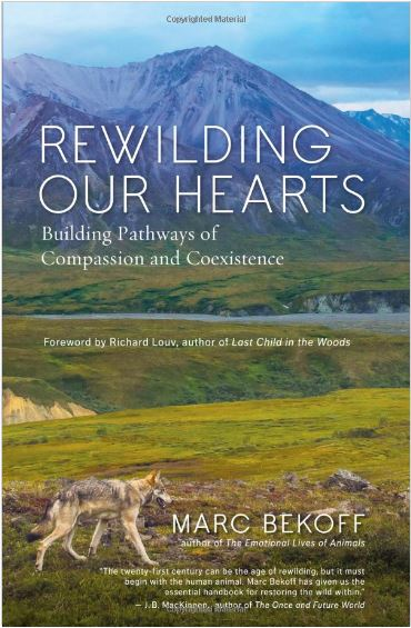 Rewilding Our Hearts: Building Pathways of Compassion and Coexistence by Marc Bekoff