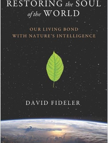 Restoring the Soul of the World - David Fideler