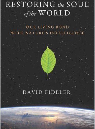 Restoring the Soul of the World - David Fideler