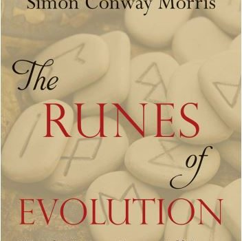 The Runes of Evolution - Simon Conway Morris