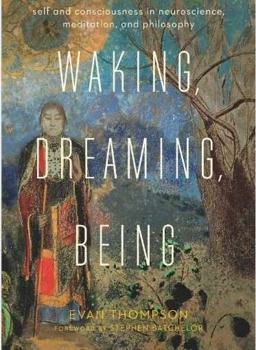 Waking, Dreaming, Being - Evan Ziewe