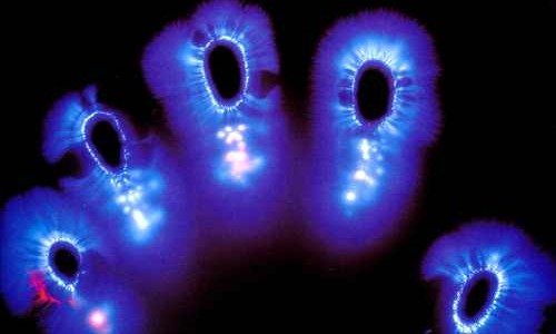 Kirlian photo