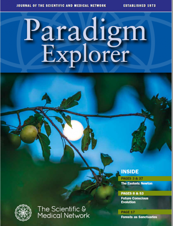Paradigm Explorer 2018 -1