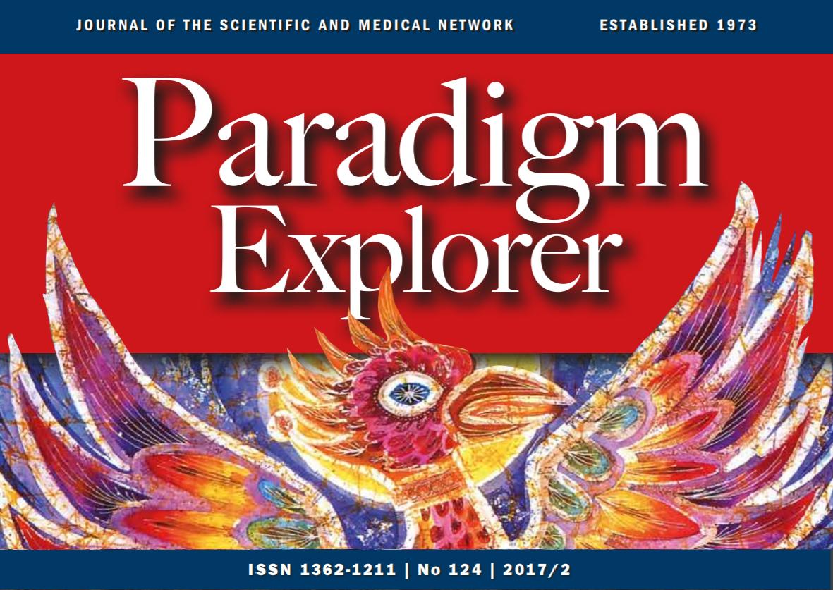 Paradigm Explorer 2017 - 2 Preview