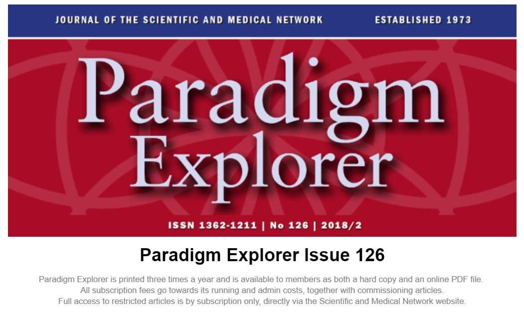 Paradigm Explorer 2018 - 1 Preview