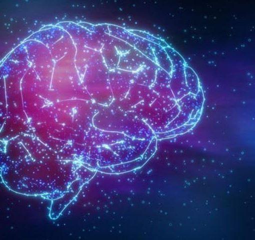 bps brain