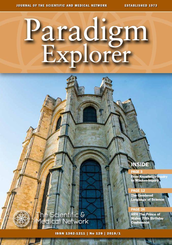 Paradigm Explorer 2019 - 1