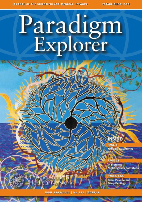 Paradigm Explorer