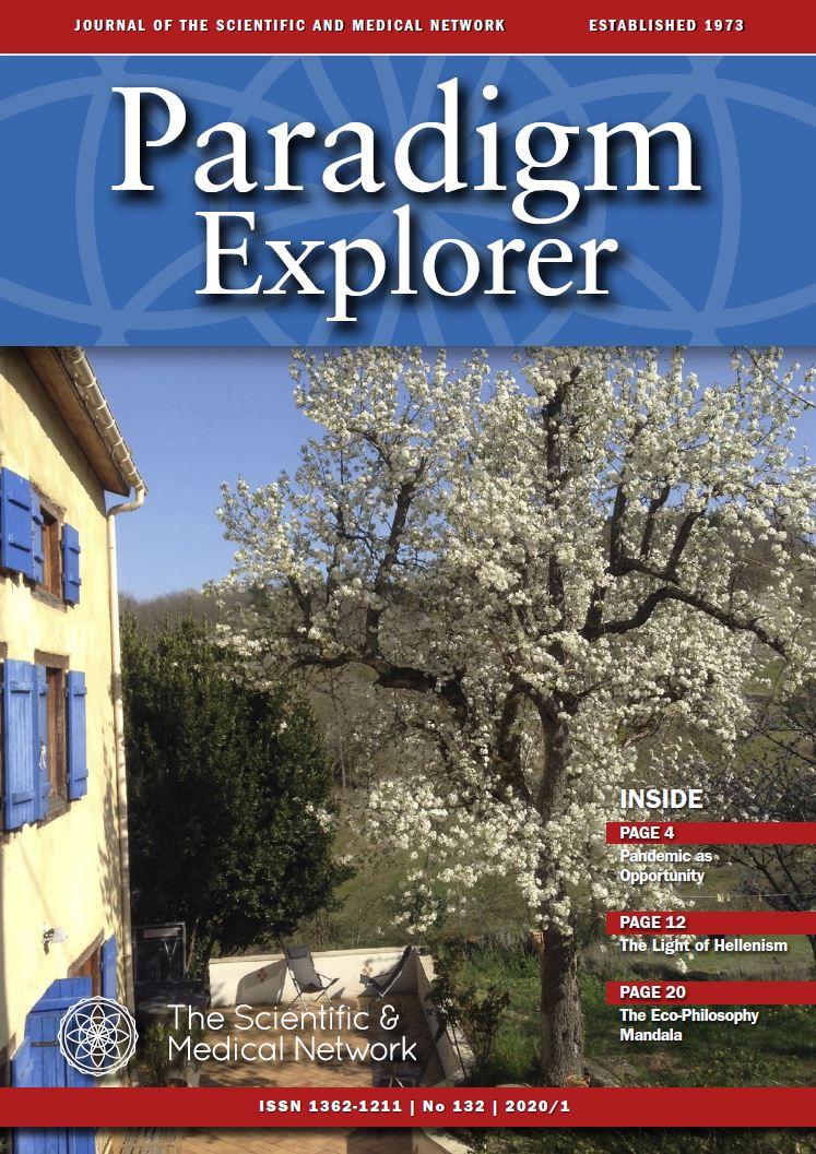 Paradigm Explorer Issue 132