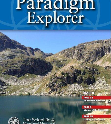 Paradigm Explorer 133